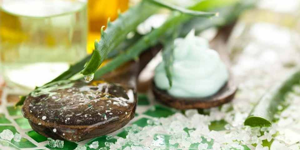 Coconut Oil and Aloe Vera for Dandruff