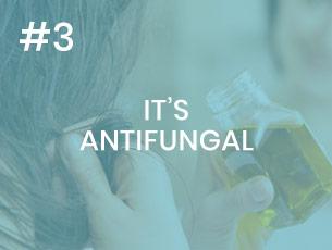 tea tree oil is antifungal